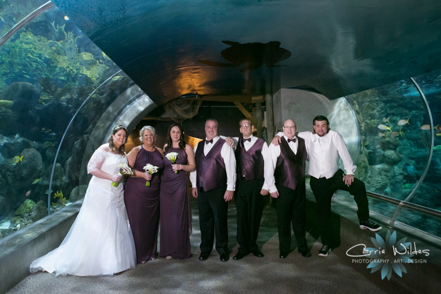 1_31_16 Florida Aquarium Wedding_0011.jpg