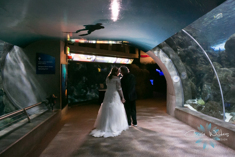 1_31_16 Florida Aquarium Wedding_0015.jpg