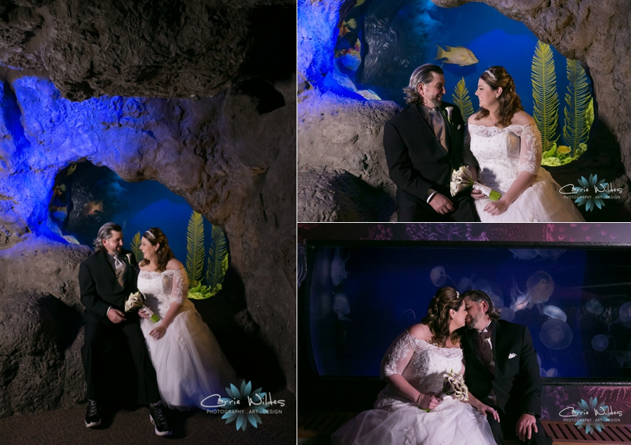 1_31_16 Florida Aquarium Wedding_0014.jpg