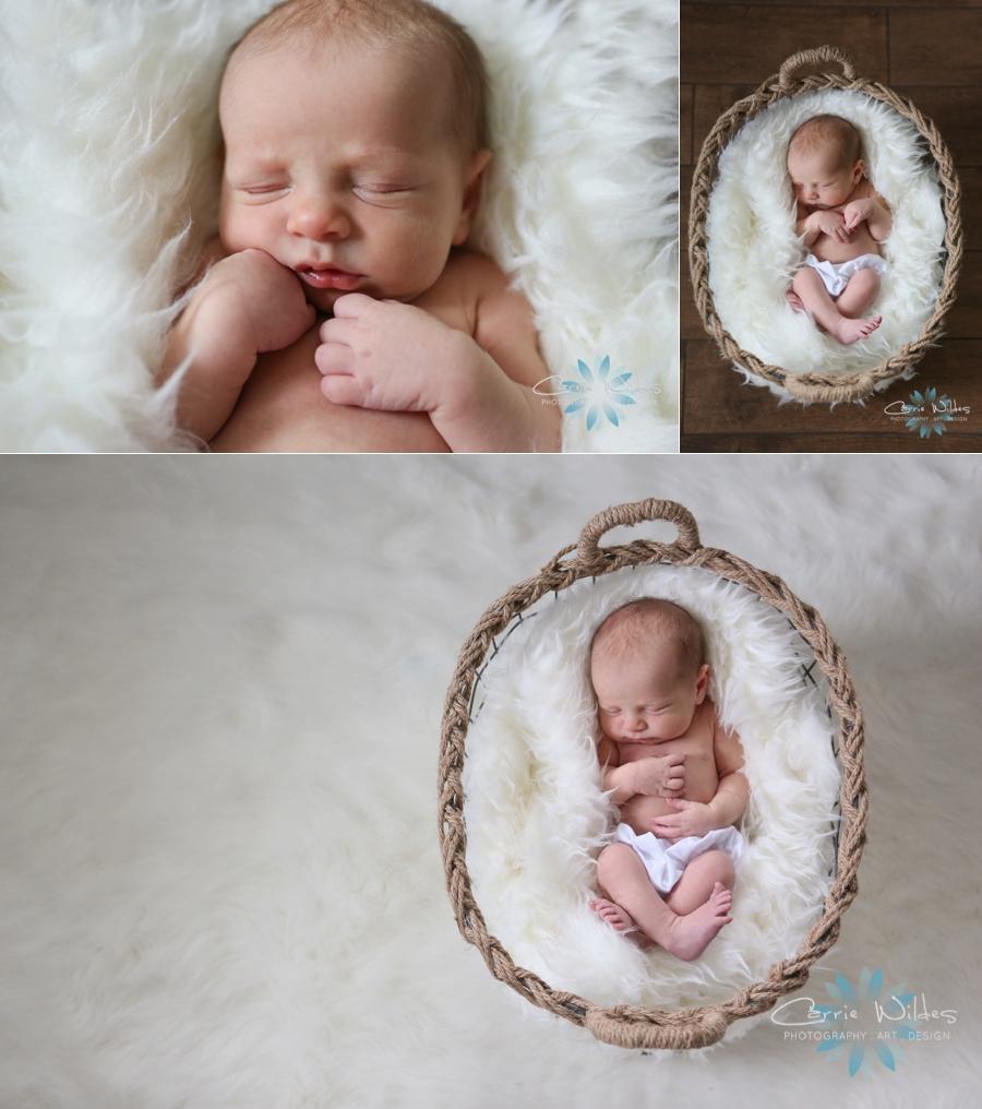 3_25_16 Tampa Newborn Portraits_0008.jpg