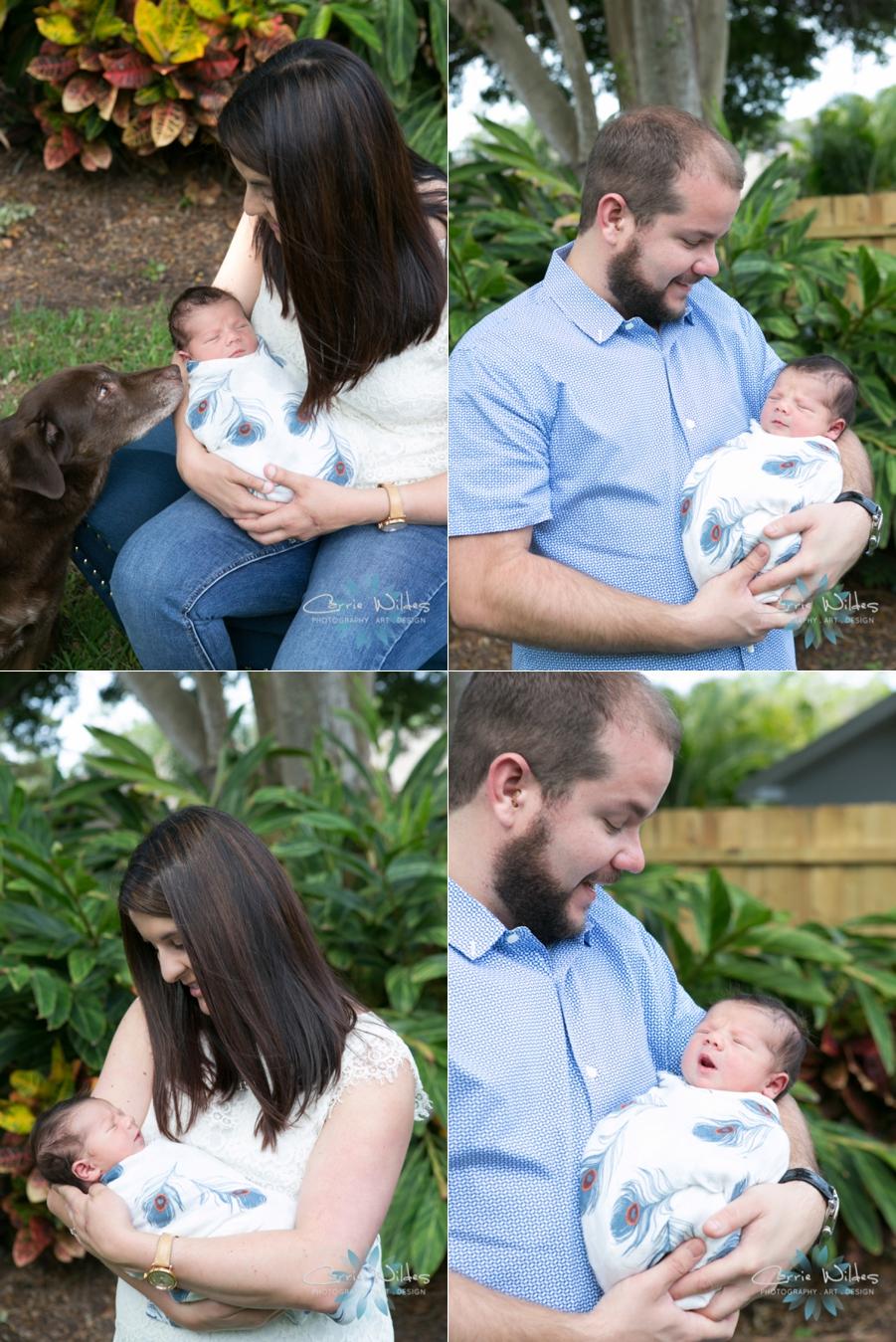 5_10_16 Dax Tampa St Pete Lifestyle Newborn Portraits_0001.jpg