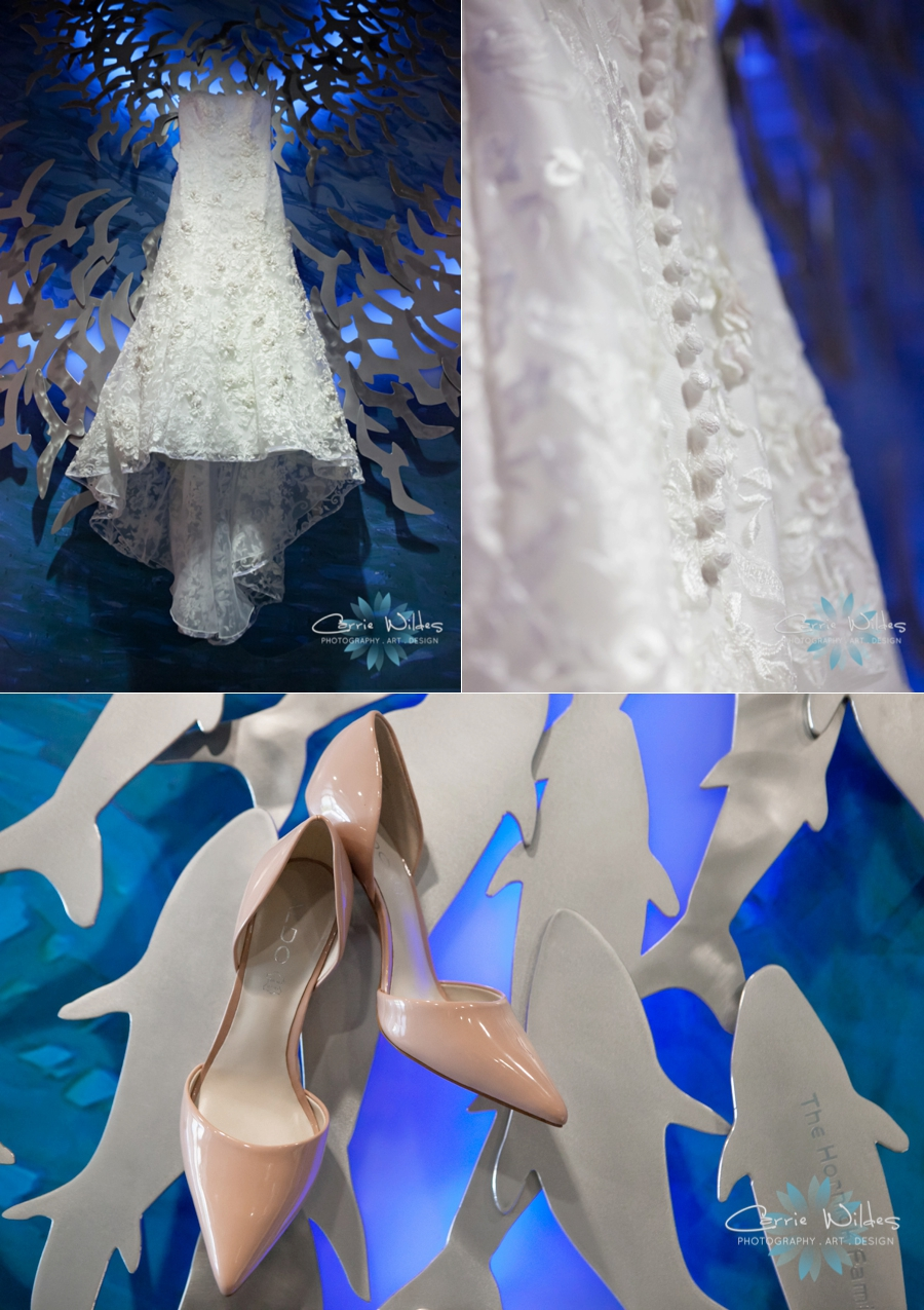 7_15_16 Florida Aquarium Wedding_0002.jpg