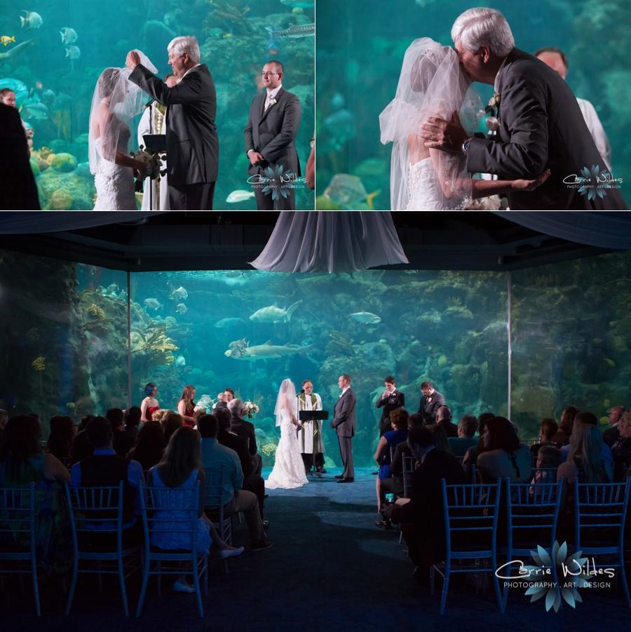 7_15_16 Florida Aquarium Wedding_0013.jpg