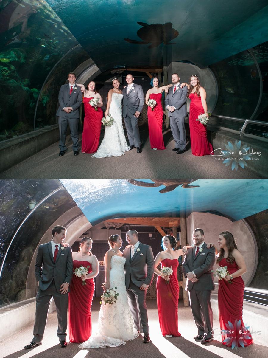 7_15_16 Florida Aquarium Wedding_0019.jpg