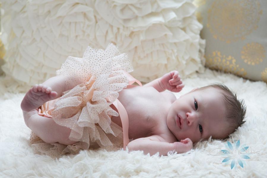8_5_16 Harper Tampa Newborn Lifestyle Portraits_-12.jpg