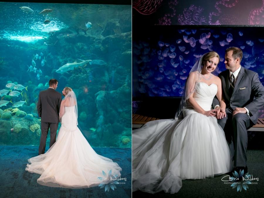 8_19_16 Florida Aquarium Wedding_0023.jpg