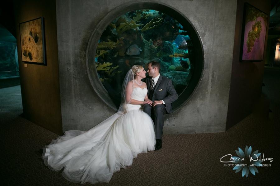 8_19_16 Florida Aquarium Wedding_0024.jpg