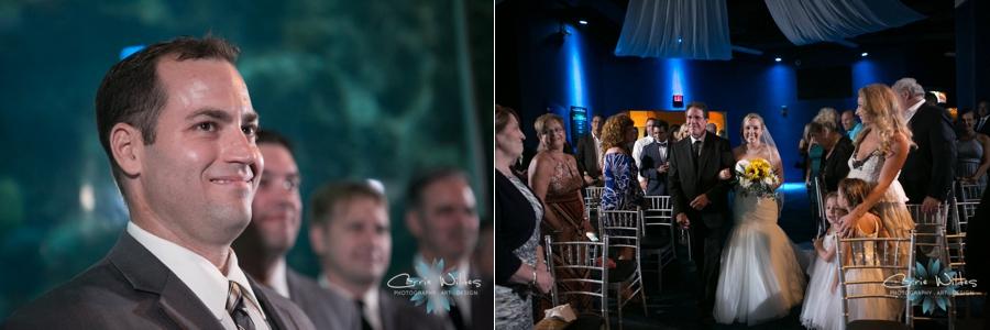 8_19_16 Florida Aquarium Wedding_0026.jpg