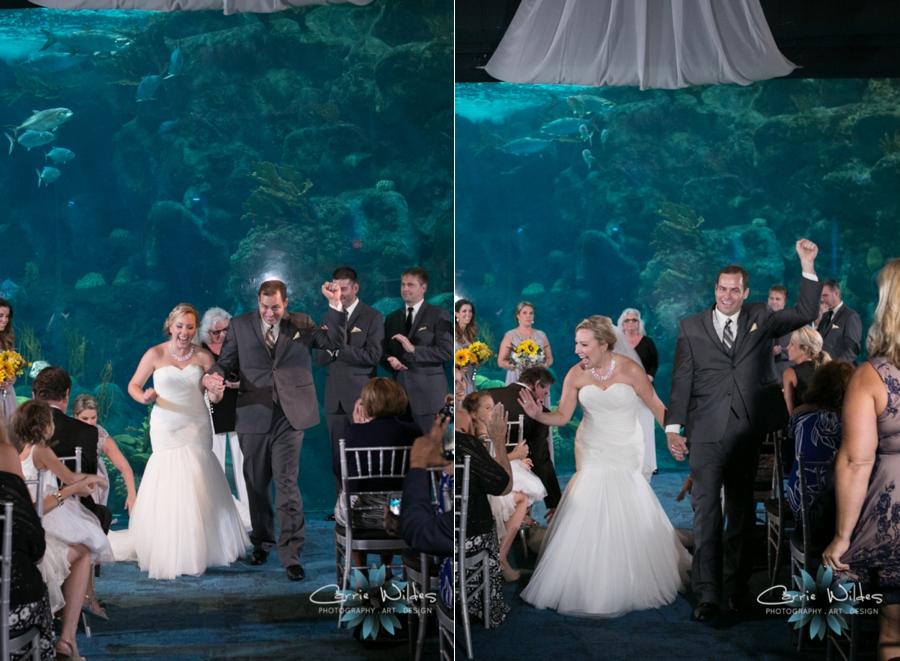 8_19_16 Florida Aquarium Wedding_0029.jpg