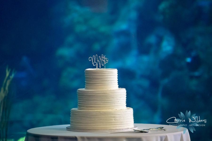 8_19_16 Florida Aquarium Wedding_0033.jpg