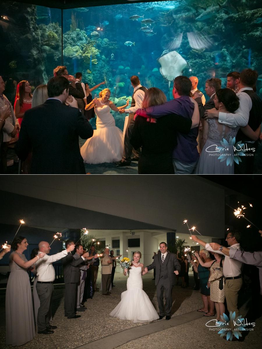 8_19_16 Florida Aquarium Wedding_0038.jpg