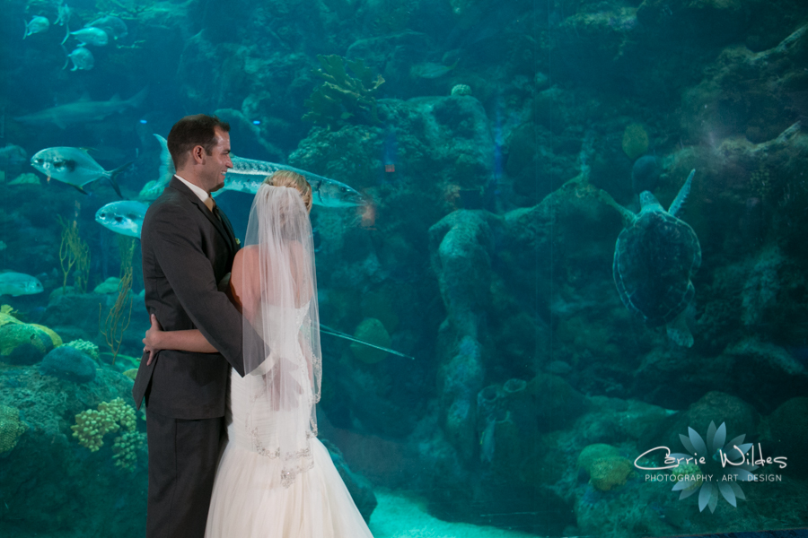 8_19_16 Florida Aquarium Wedding 63.jpg