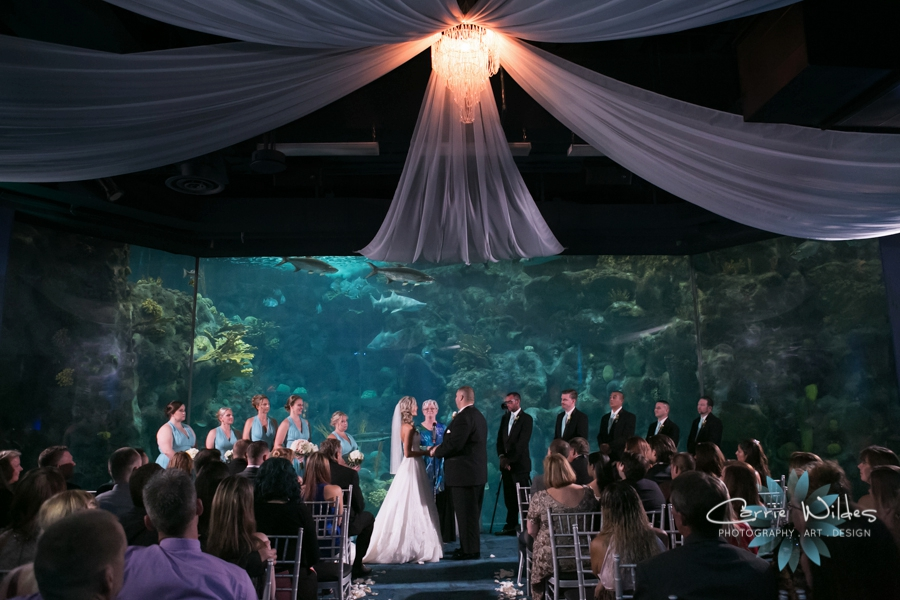9_17_16 Alecia and Donald Florida Aquarium Wedding_0022.jpg