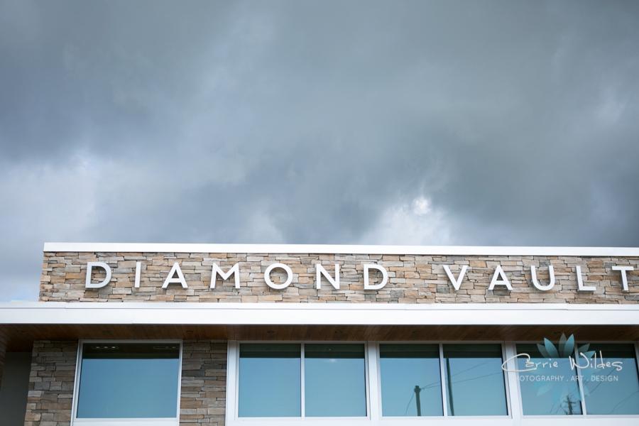 10_4_16 Diamond Vault Jennifer Matteo_0001.jpg
