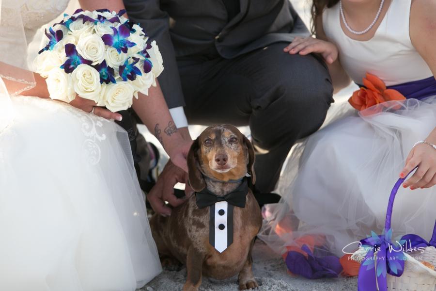 10_15_16 Adora and Josh Marina Jacks Wedding_0028.jpg