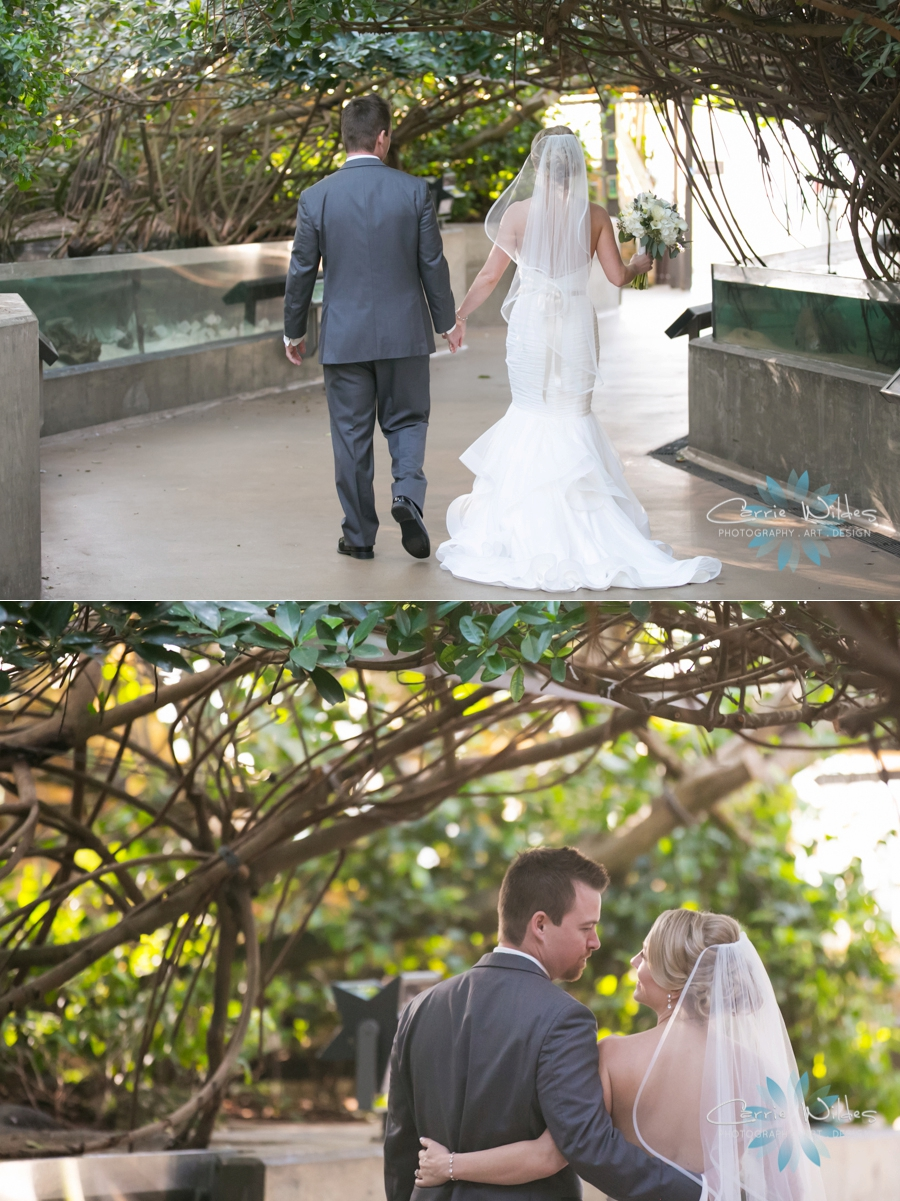 2_17_18 Kristin and Curtis Florida Aquarium Wedding_0030.jpg