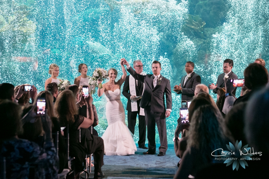 2_17_18 Kristin and Curtis Florida Aquarium Wedding_0039.jpg
