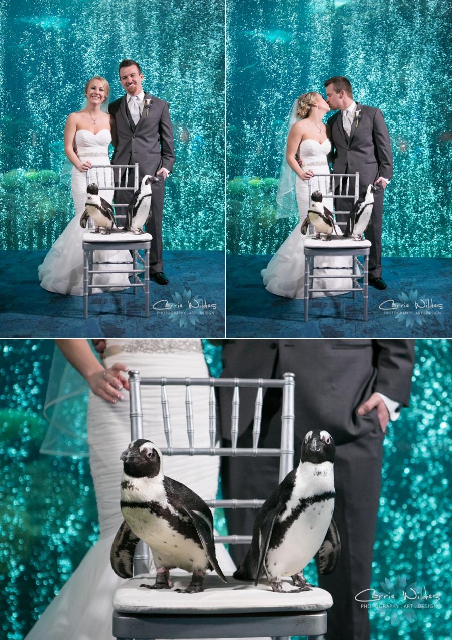 2_17_18 Kristin and Curtis Florida Aquarium Wedding_0040.jpg