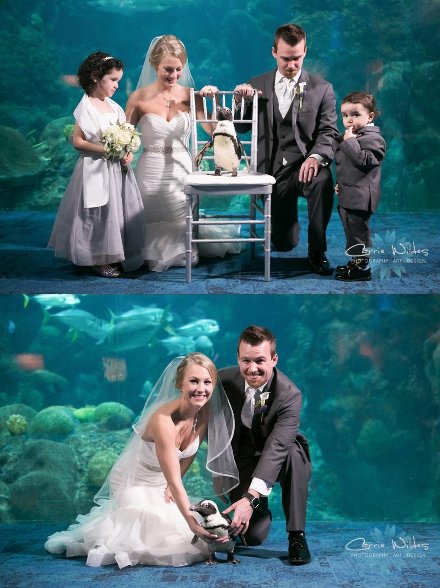 2_17_18 Kristin and Curtis Florida Aquarium Wedding_0041.jpg