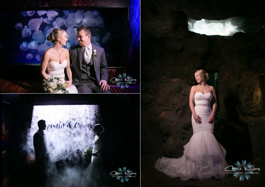 2_17_18 Kristin and Curtis Florida Aquarium Wedding_0042.jpg