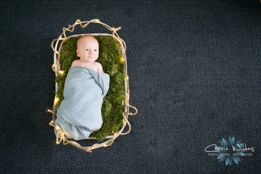 7_30_18 Landon Tampa Newborn Session_0011.jpg