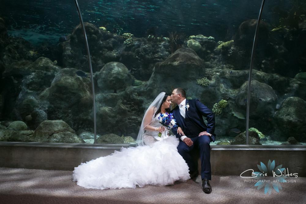 10_20_18 Donna and Drew The Florida Aquarium Wedding 069.jpg