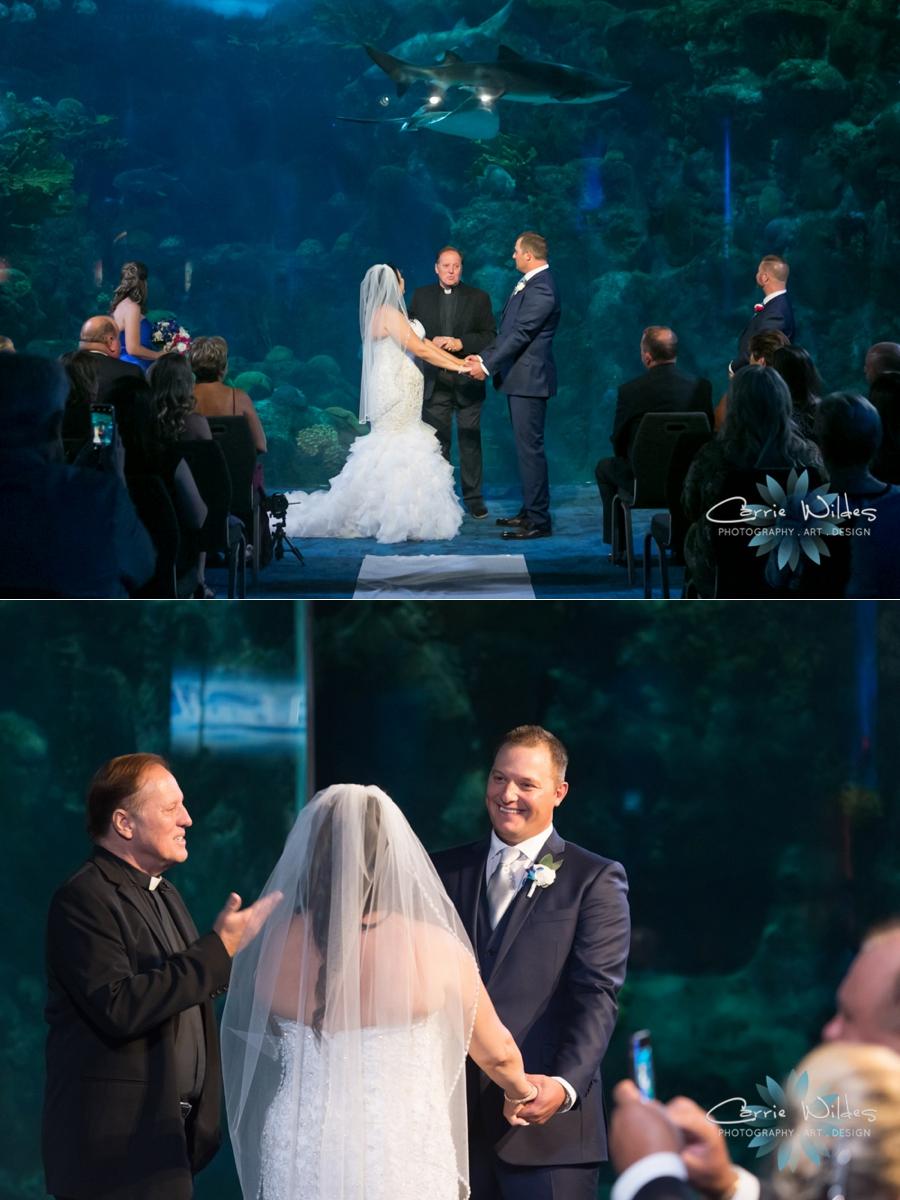 10_20_18 Donna and Drew The Florida Aquarium Wedding_0022.jpg