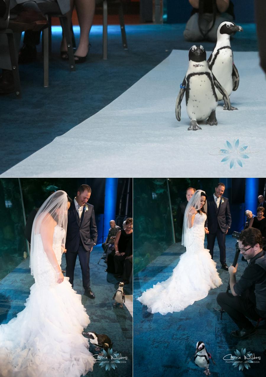 10_20_18 Donna and Drew The Florida Aquarium Wedding_0023.jpg