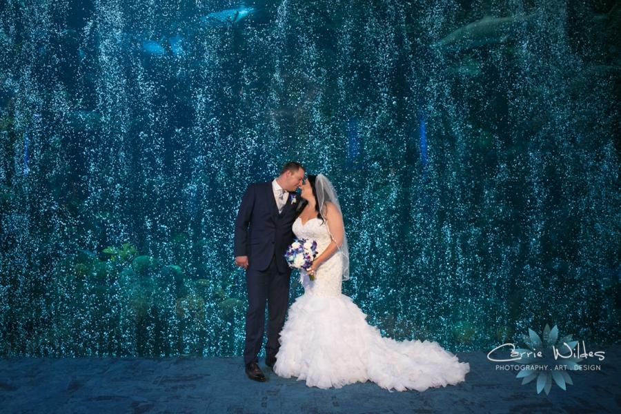 10_20_18 Donna and Drew The Florida Aquarium Wedding_0025.jpg