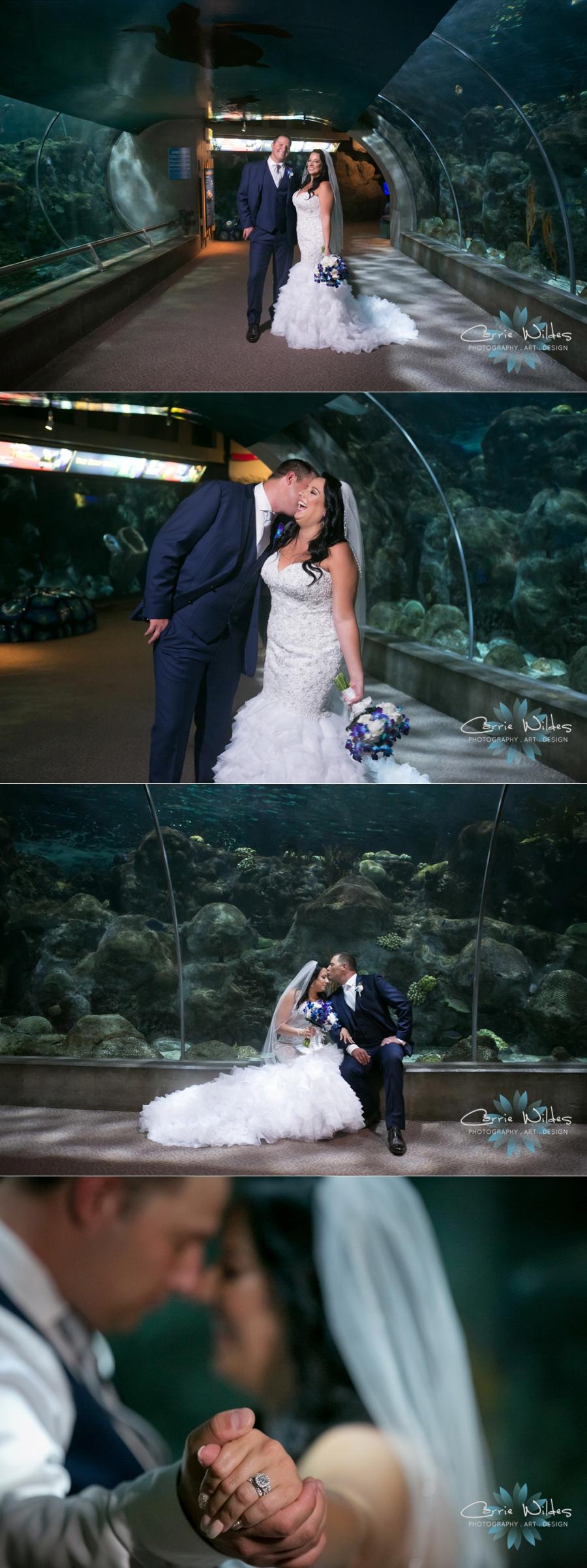 10_20_18 Donna and Drew The Florida Aquarium Wedding_0028.jpg