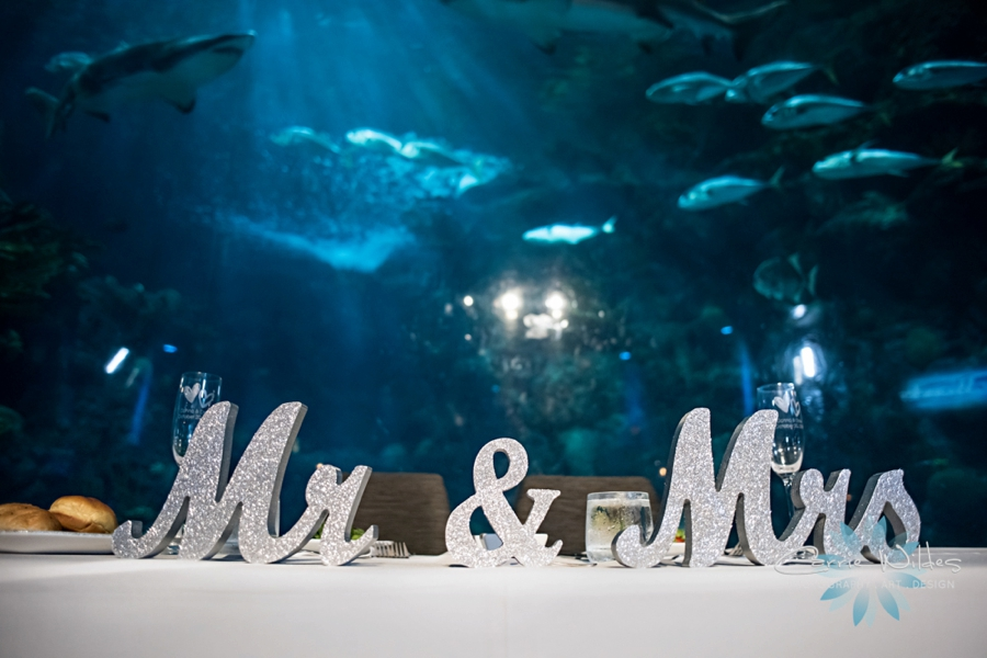 10_20_18 Donna and Drew The Florida Aquarium Wedding_0031.jpg