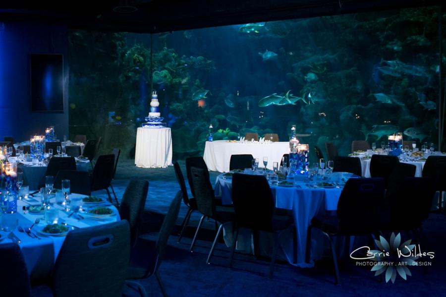 10_20_18 Donna and Drew The Florida Aquarium Wedding_0032.jpg