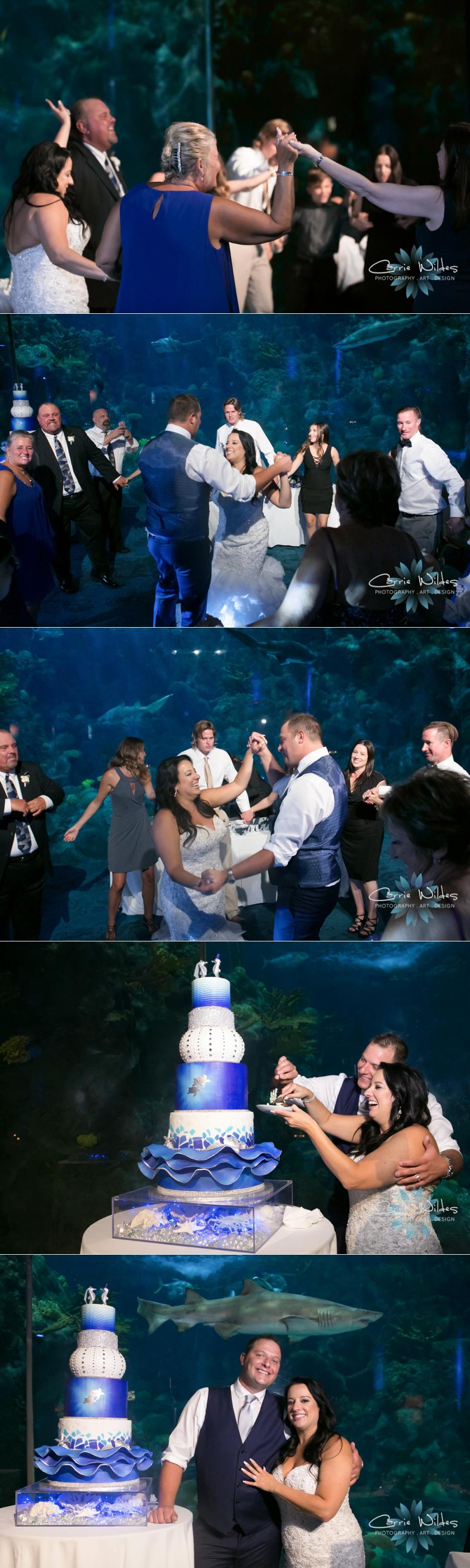 10_20_18 Donna and Drew The Florida Aquarium Wedding_0038.jpg