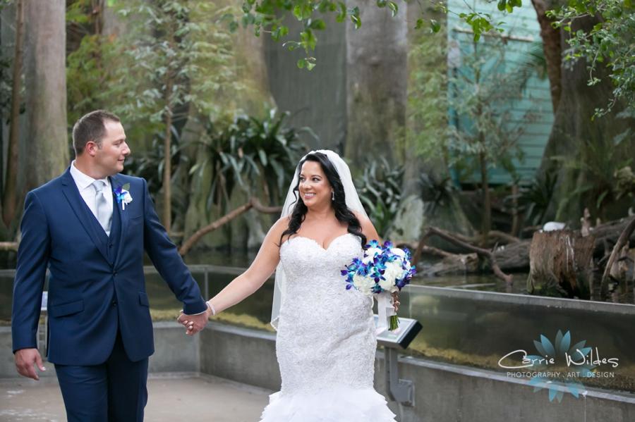 10_20_18 Donna and Drew The Florida Aquarium Wedding_0015.jpg