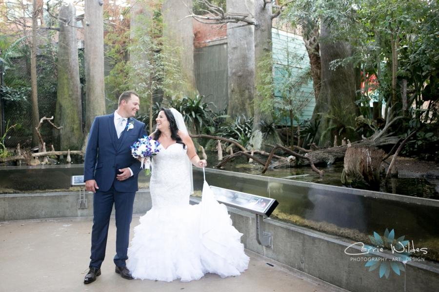 10_20_18 Donna and Drew The Florida Aquarium Wedding_0016.jpg