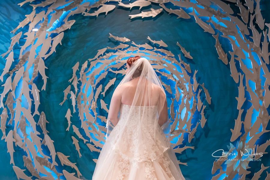 10_21_18 Emily and Bryan Florida Aquarium Wedding_0002.jpg