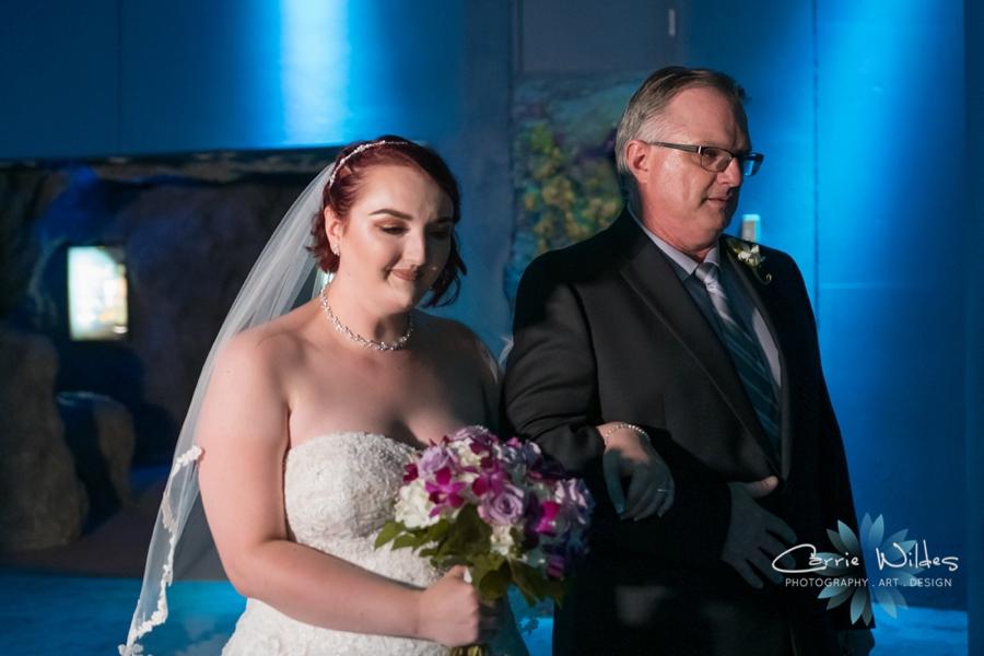 10_21_18 Emily and Bryan Florida Aquarium Wedding_0003.jpg