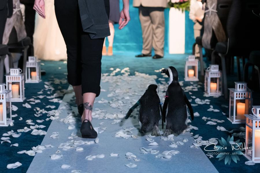 10_21_18 Emily and Bryan Florida Aquarium Wedding_0004.jpg