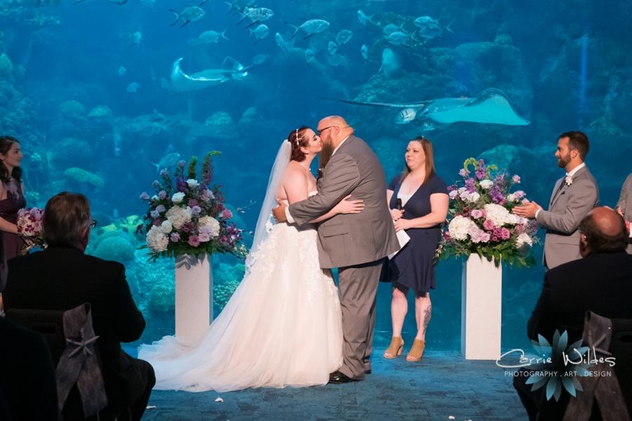 10_21_18 Emily and Bryan Florida Aquarium Wedding_0007.jpg