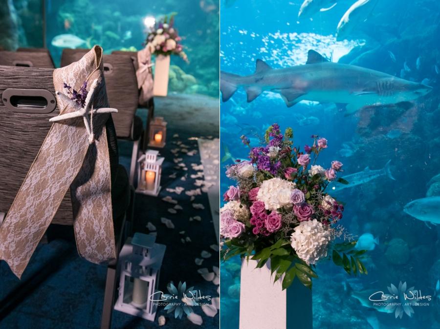 10_21_18 Emily and Bryan Florida Aquarium Wedding_0010.jpg