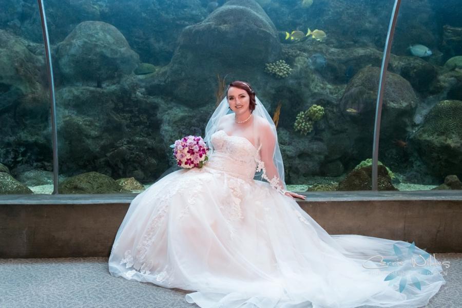 10_21_18 Emily and Bryan Florida Aquarium Wedding_0011.jpg