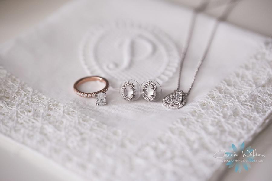 4_6_19 Brittany and Carl Armature Works Wedding_0003.jpg