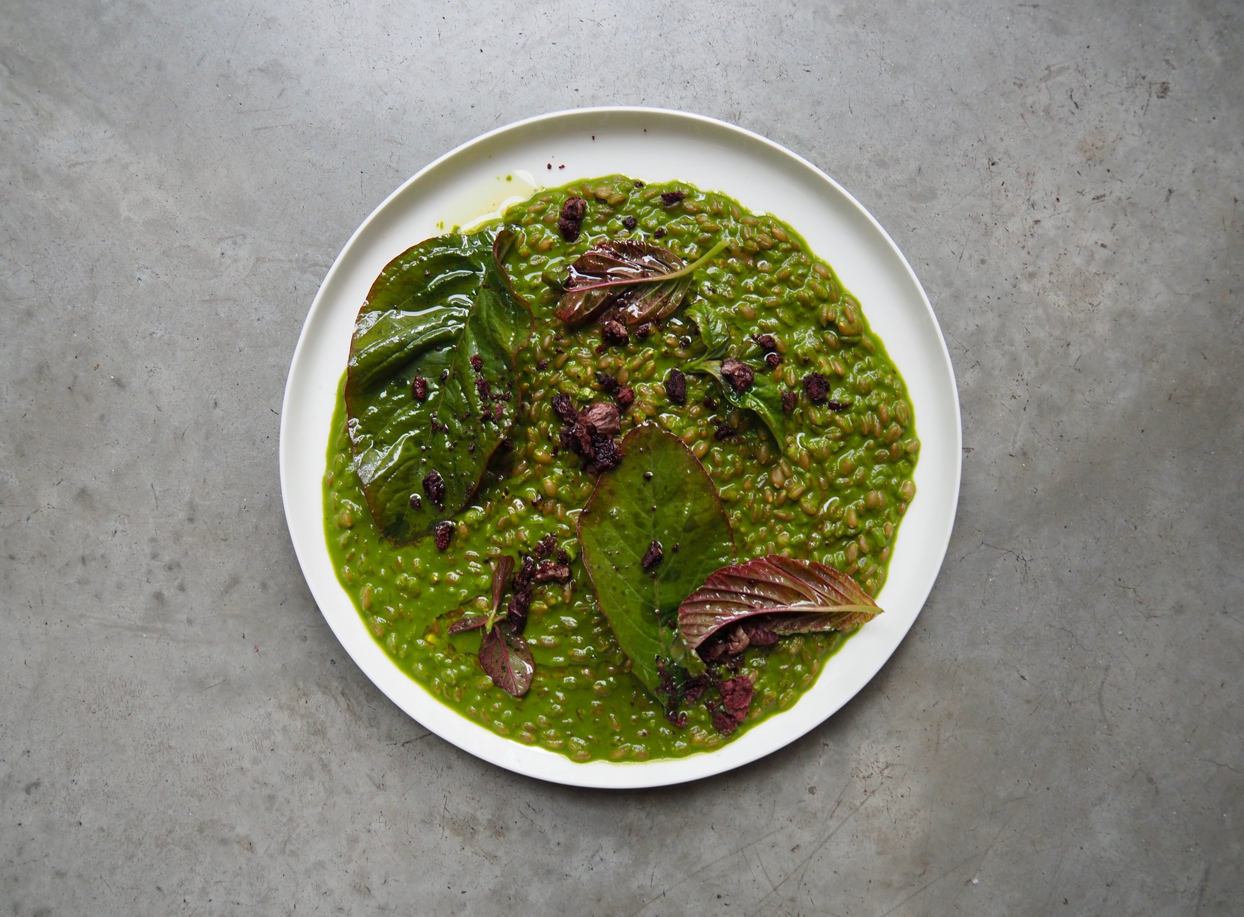 Spelt grain braised in greens with dried olive