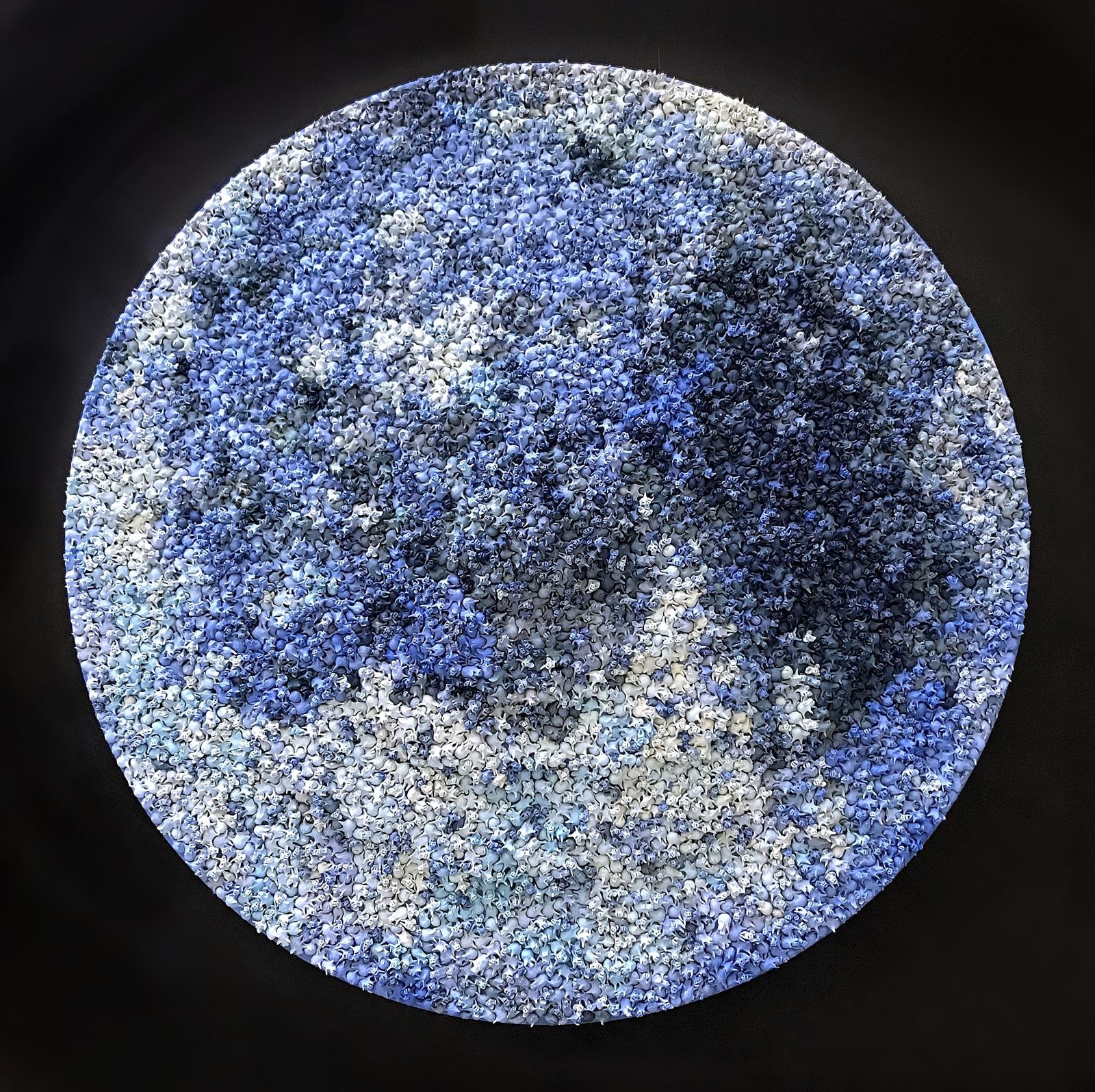Blue Moon 1.jpg