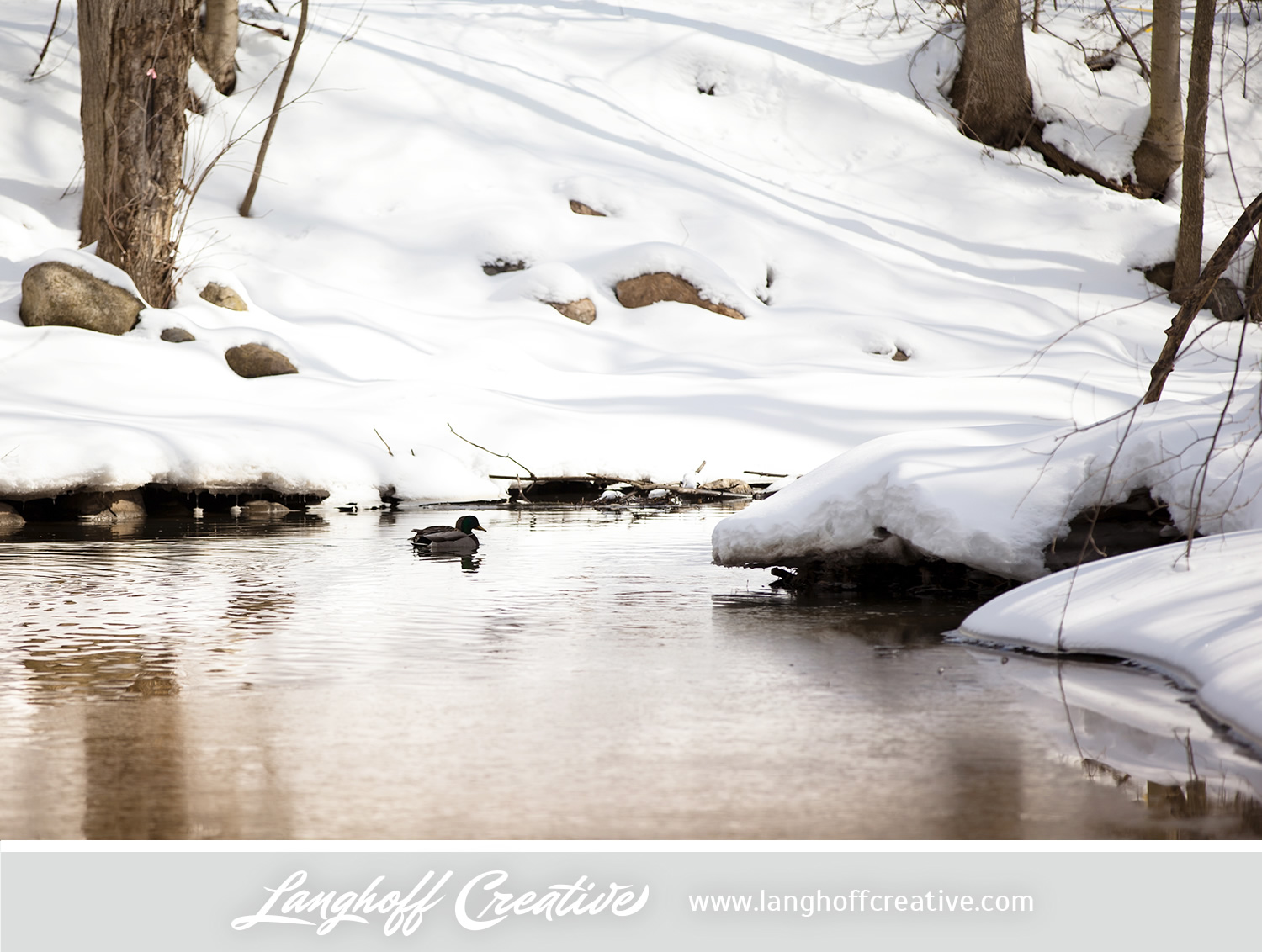 LanghoffCreative-20130308-winter4-image.jpg