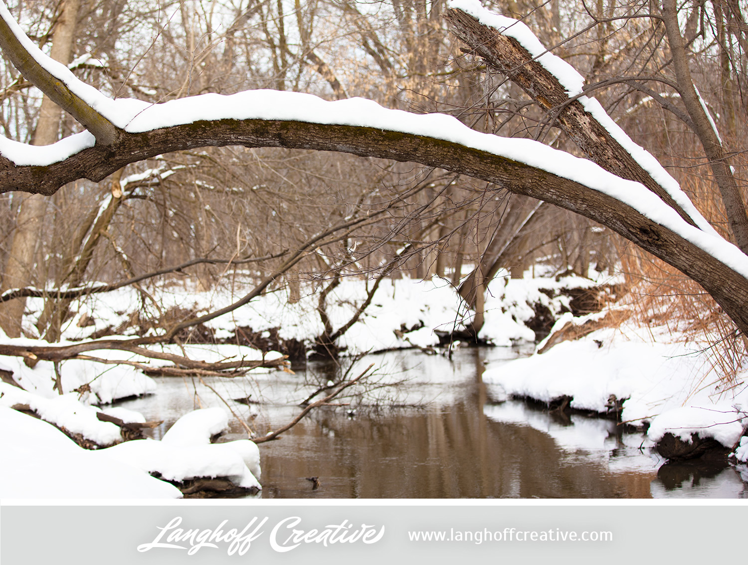 LanghoffCreative-20130308-winter13-image.jpg