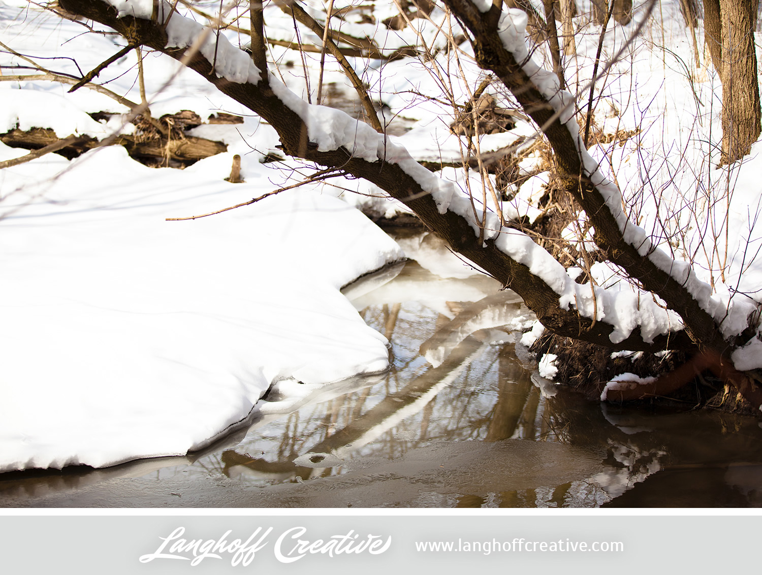 LanghoffCreative-20130308-winter16-image.jpg