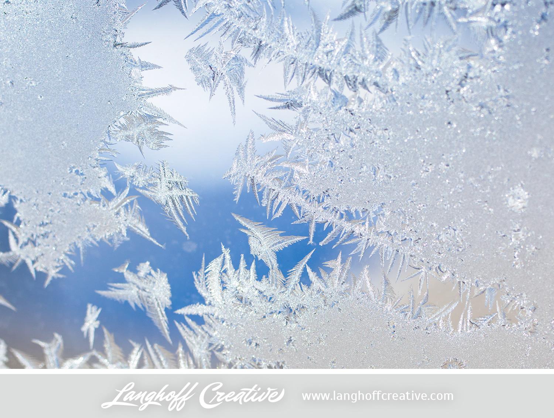 LanghoffCreative-frost-macro-photography_Jan06-2014-photo-10.jpg