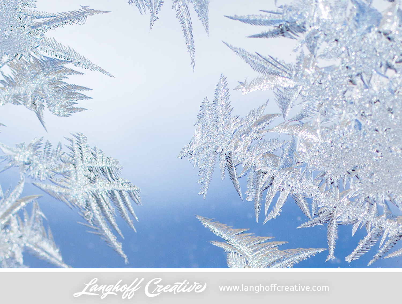 LanghoffCreative-frost-macro-photography_Jan06-2014-photo-12.jpg