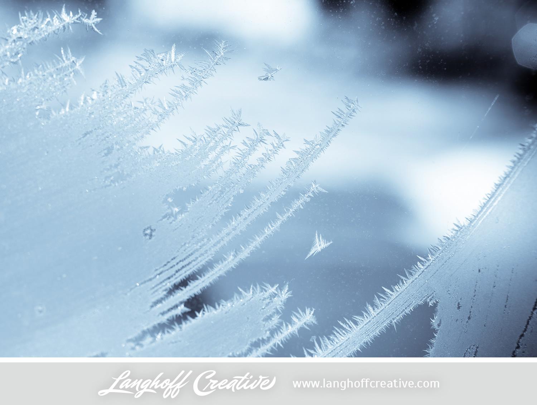 LanghoffCreative-frost-macro-photography_Jan06-2014-photo-16.jpg
